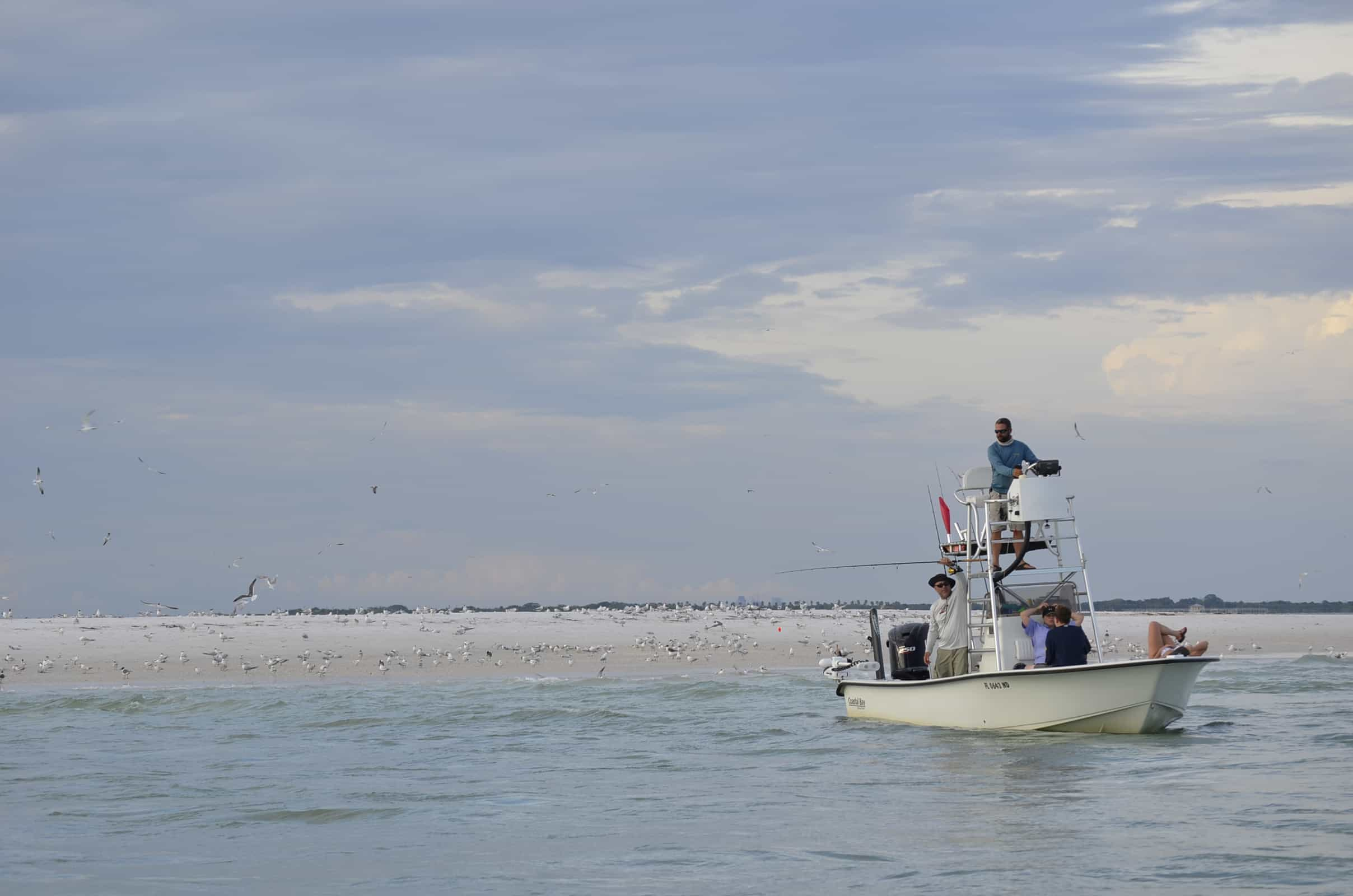 new smyrna beach fishing charters